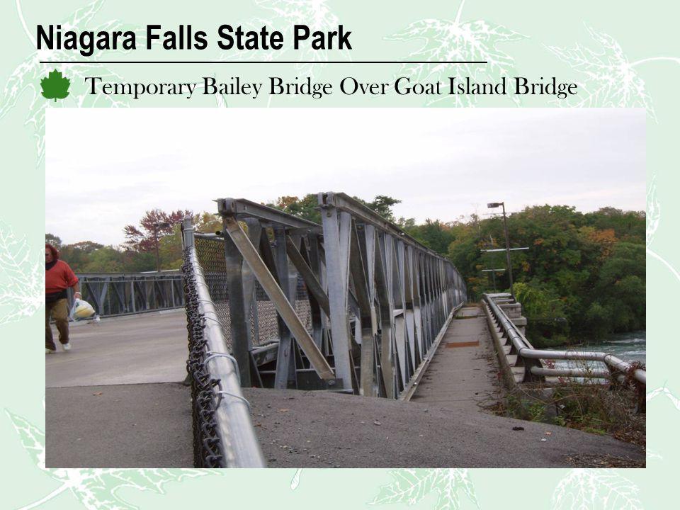 Niagara Falls State Park Temporary Bailey Bridge Over Goat Island Bridge