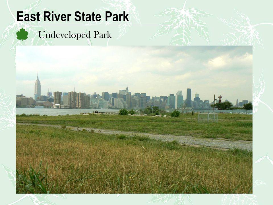 East River State Park Undeveloped Park