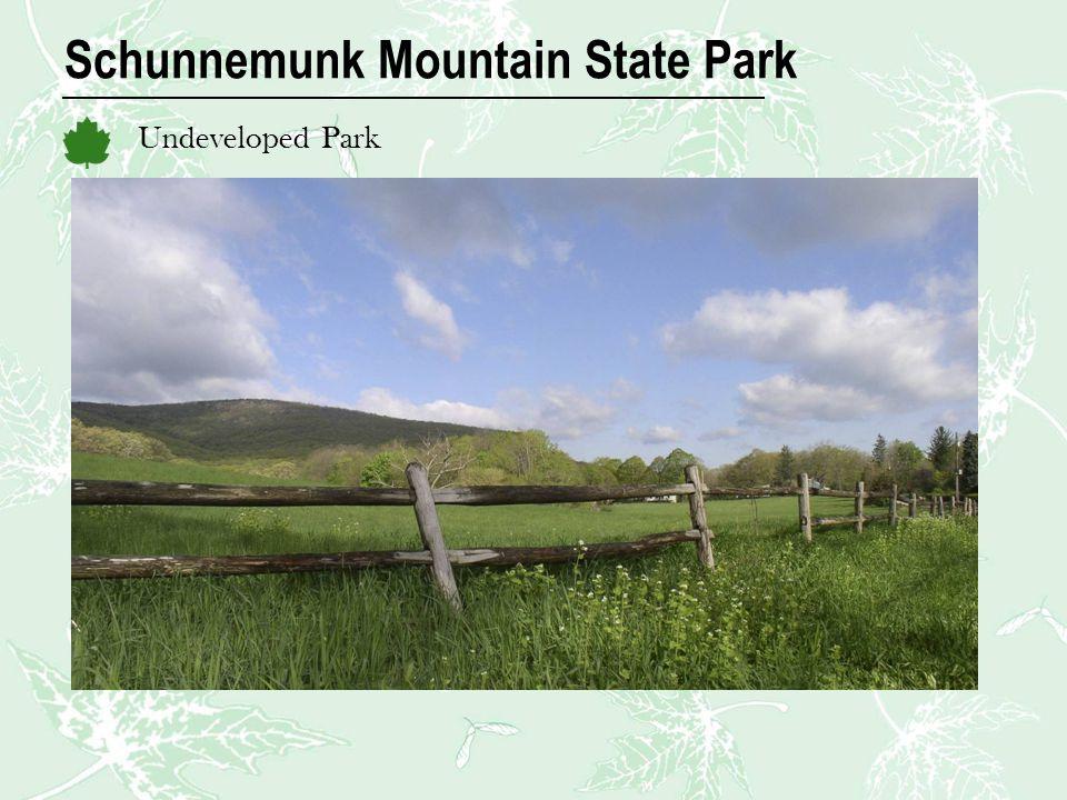 Schunnemunk Mountain State Park Undeveloped Park
