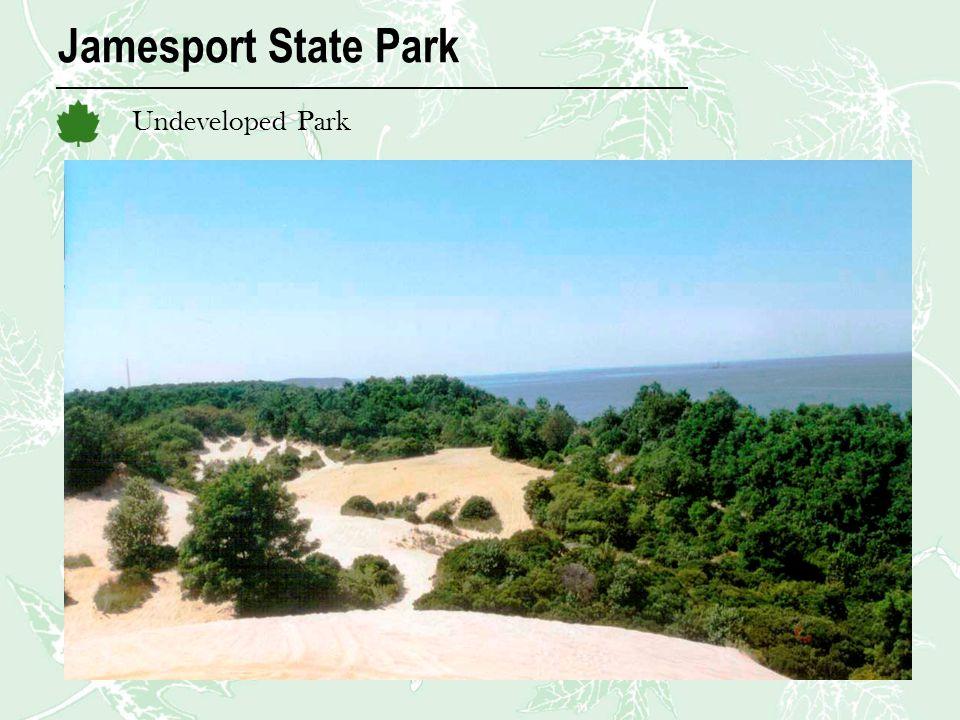 Jamesport State Park Undeveloped Park