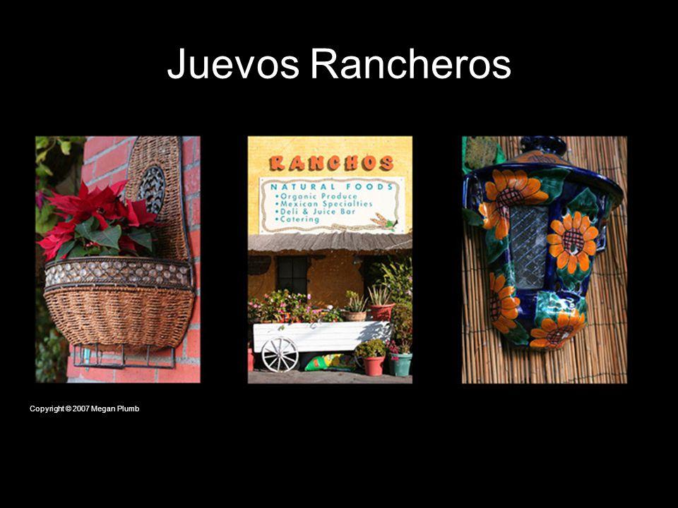 Juevos Rancheros Copyright © 2007 Megan Plumb