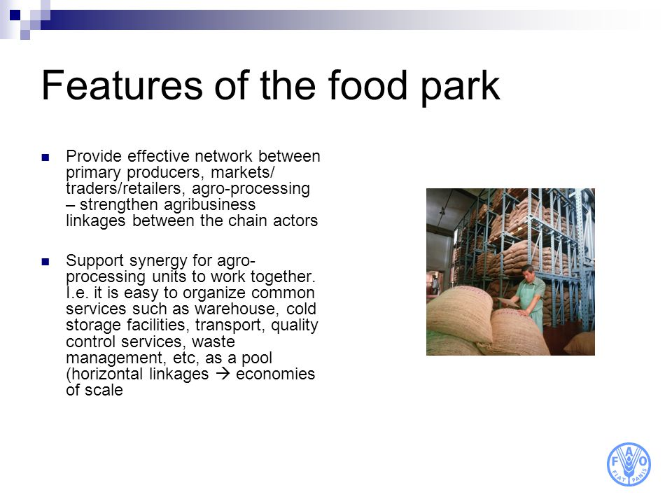 Features of the food park Provide effective network between primary producers, markets/ traders/retailers, agro-processing – strengthen agribusiness l