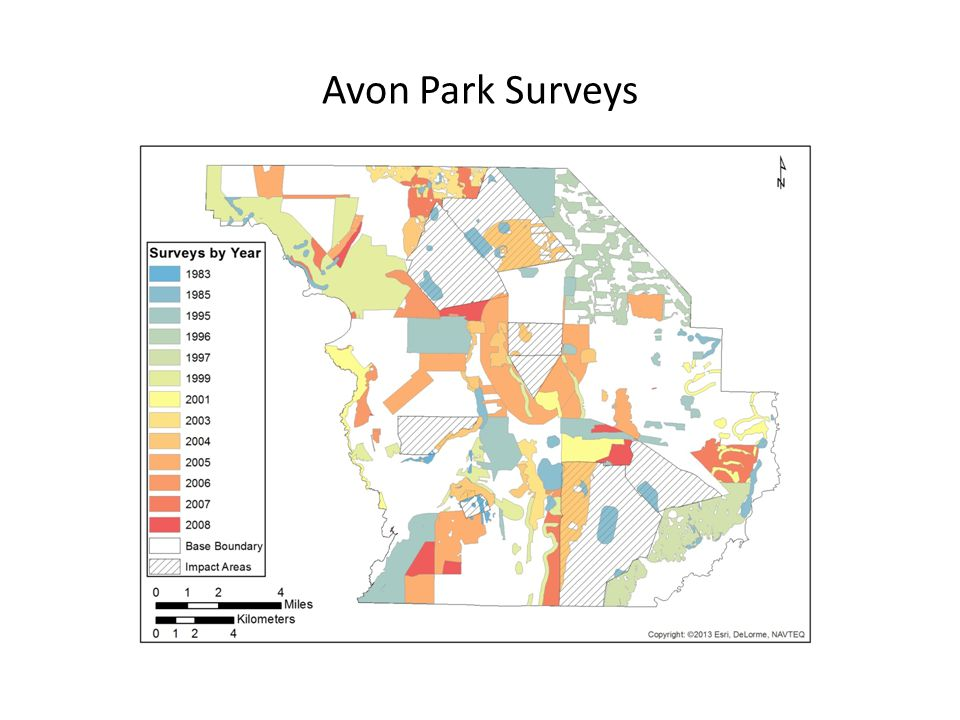 Avon Park Surveys