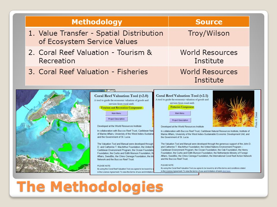The Methodologies MethodologySource 1.Value Transfer - Spatial Distribution of Ecosystem Service Values Troy/Wilson 2.Coral Reef Valuation - Tourism &
