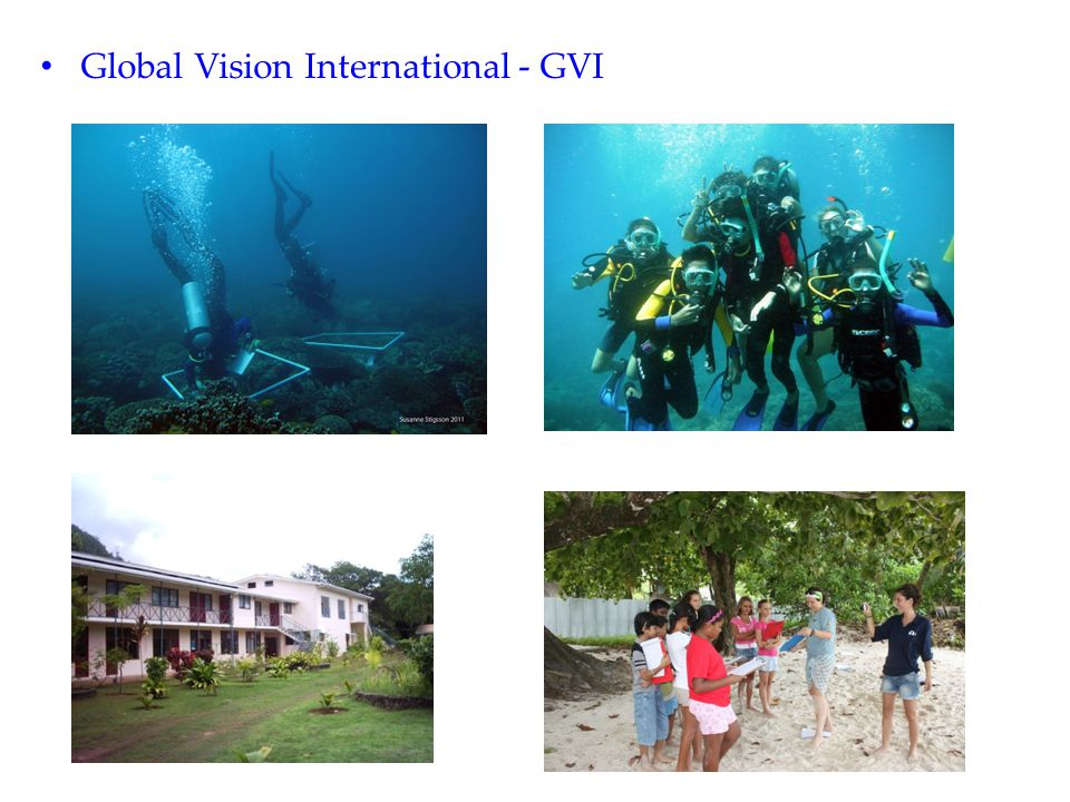 Global Vision International - GVI