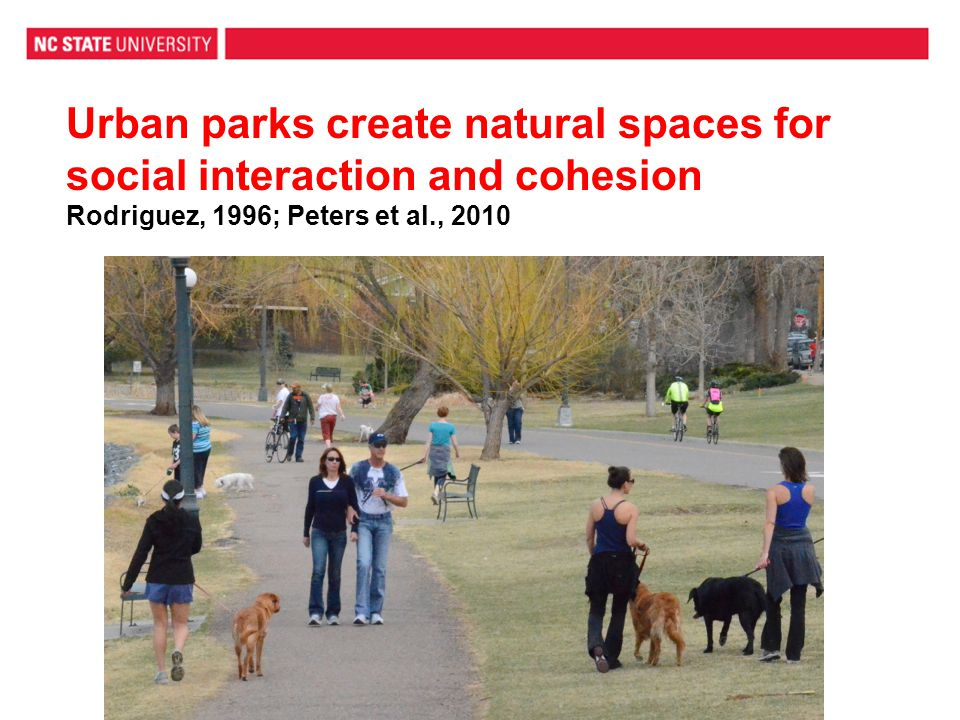 Urban parks create natural spaces for social interaction and cohesion Rodriguez, 1996; Peters et al., 2010
