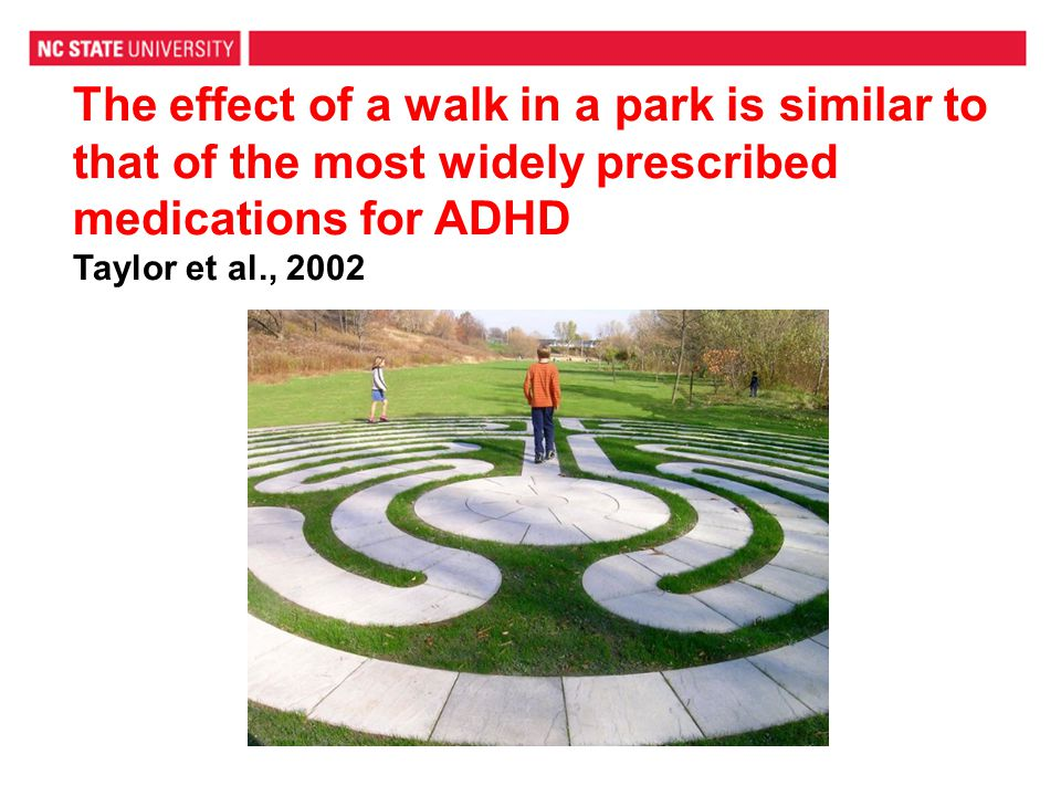 The effect of a walk in a park is similar to that of the most widely prescribed medications for ADHD Taylor et al., 2002