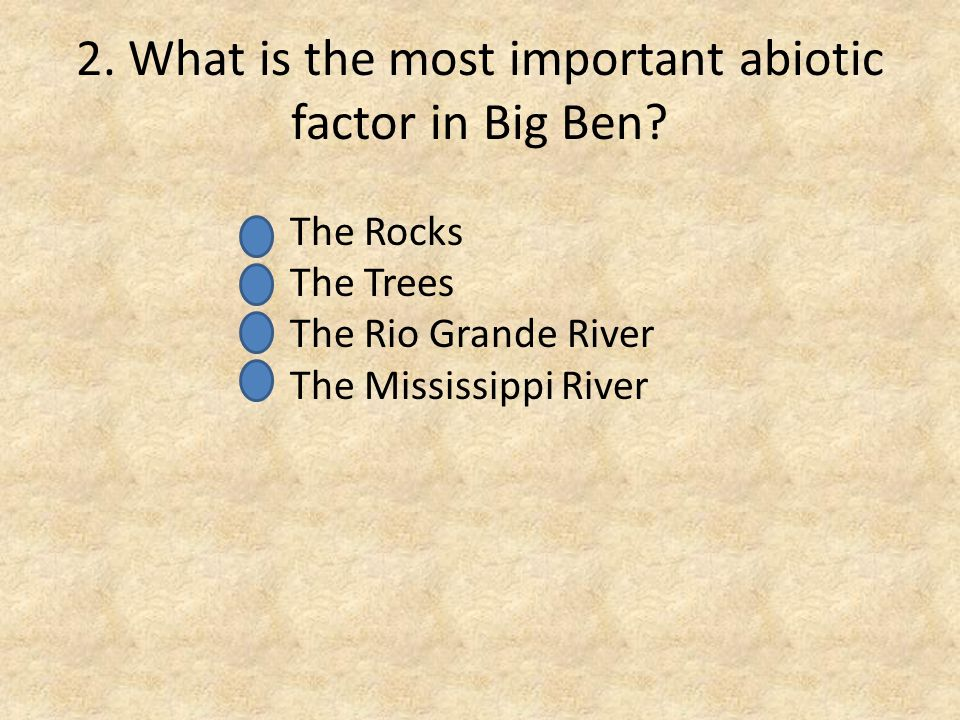 2. What is the most important abiotic factor in Big Ben.