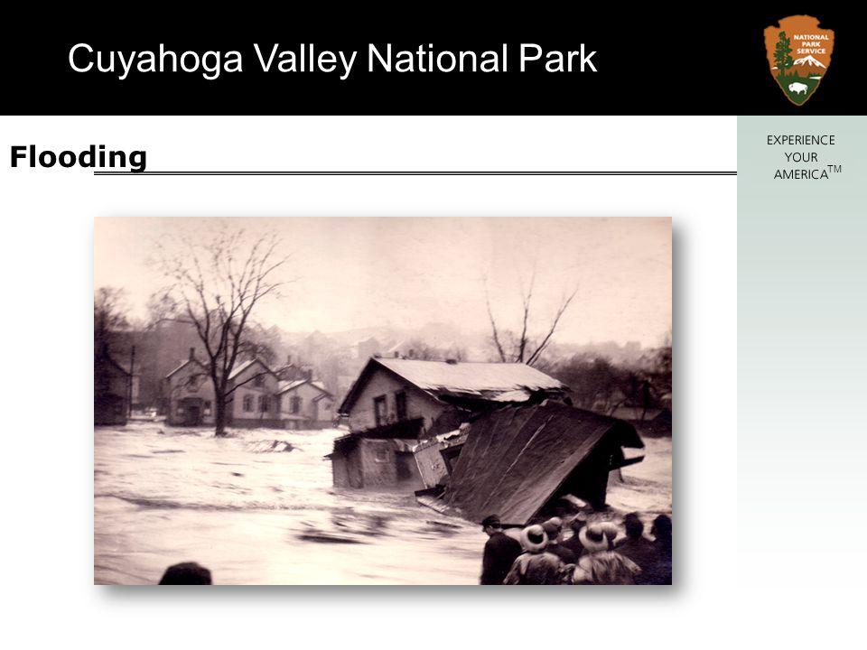 Cuyahoga Valley National Park TM Bank Erosion – typical details Stone rip rap Brush layering Soil Wraps