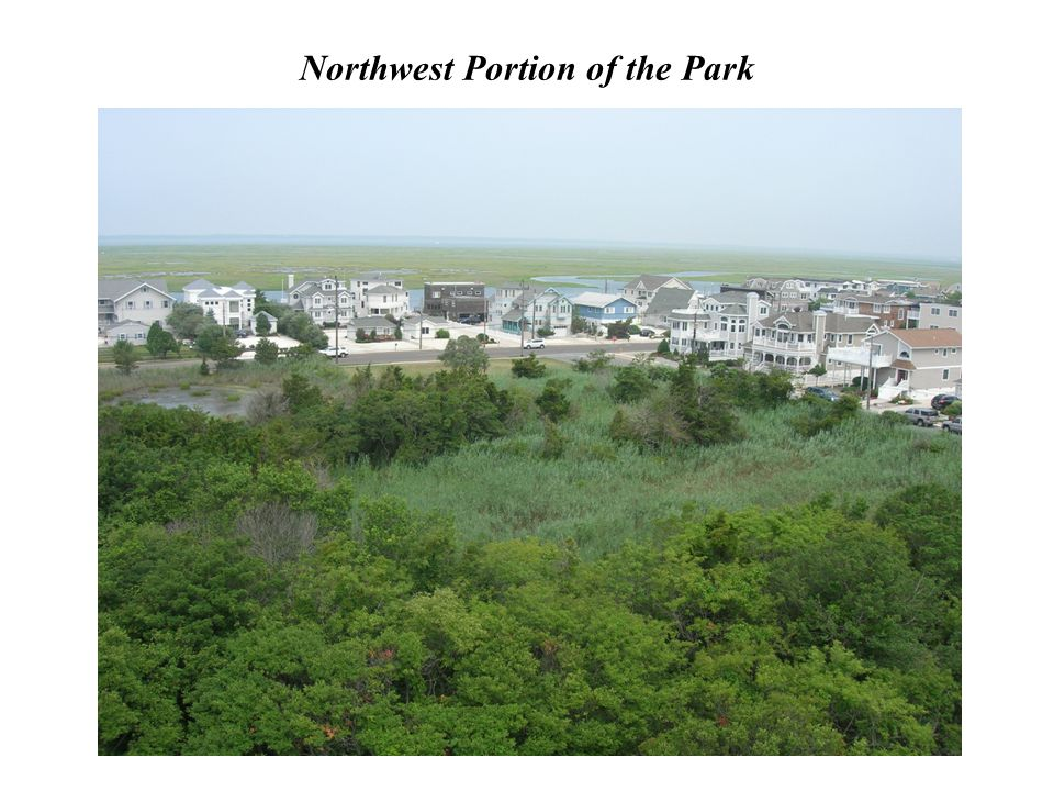 Northwest Portion of the Park