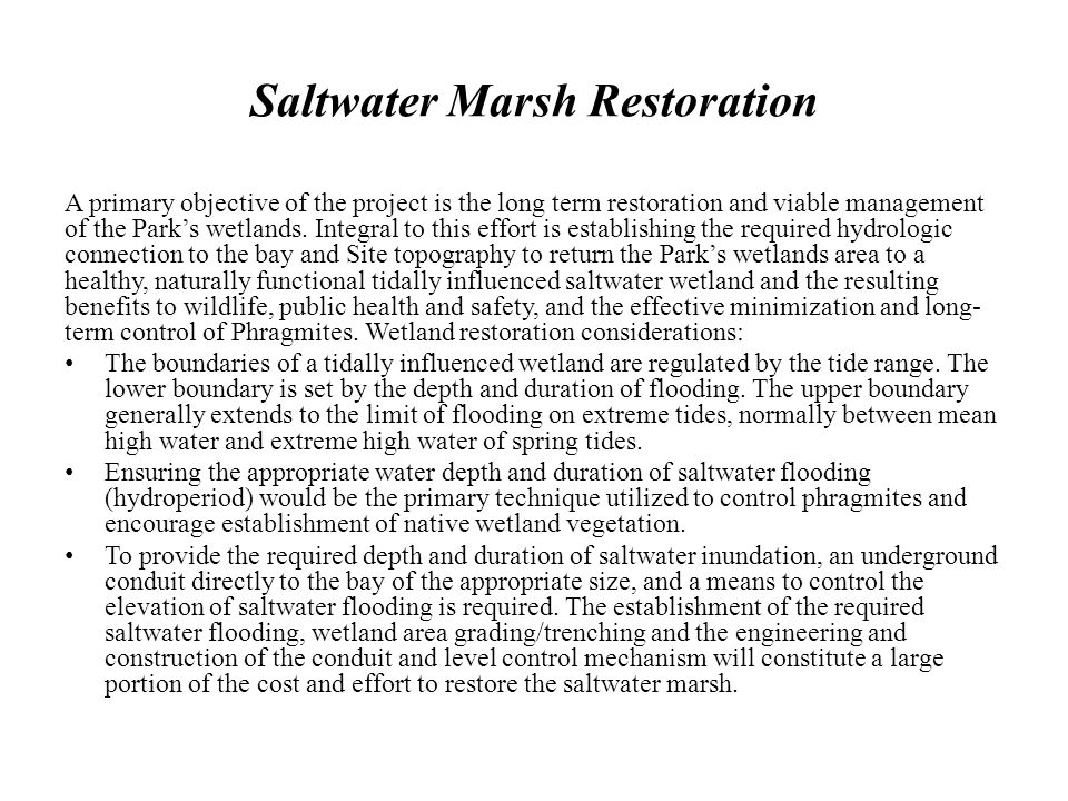 Saltwater Marsh Restoration A primary objective of the project is the long term restoration and viable management of the Parks wetlands. Integral to t