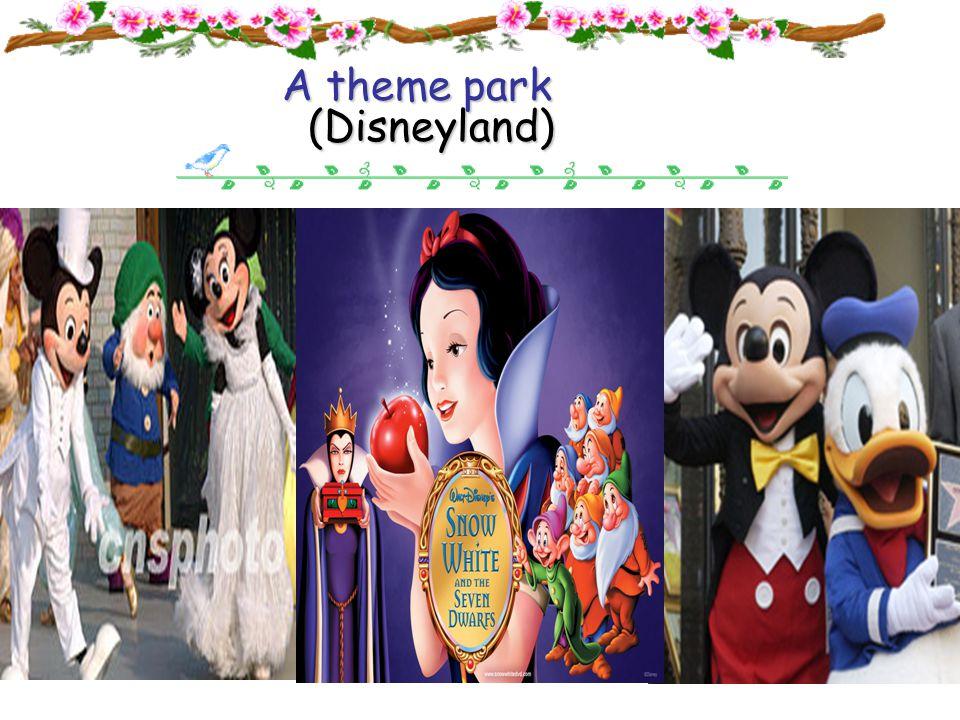 Disneyland A common park A theme park