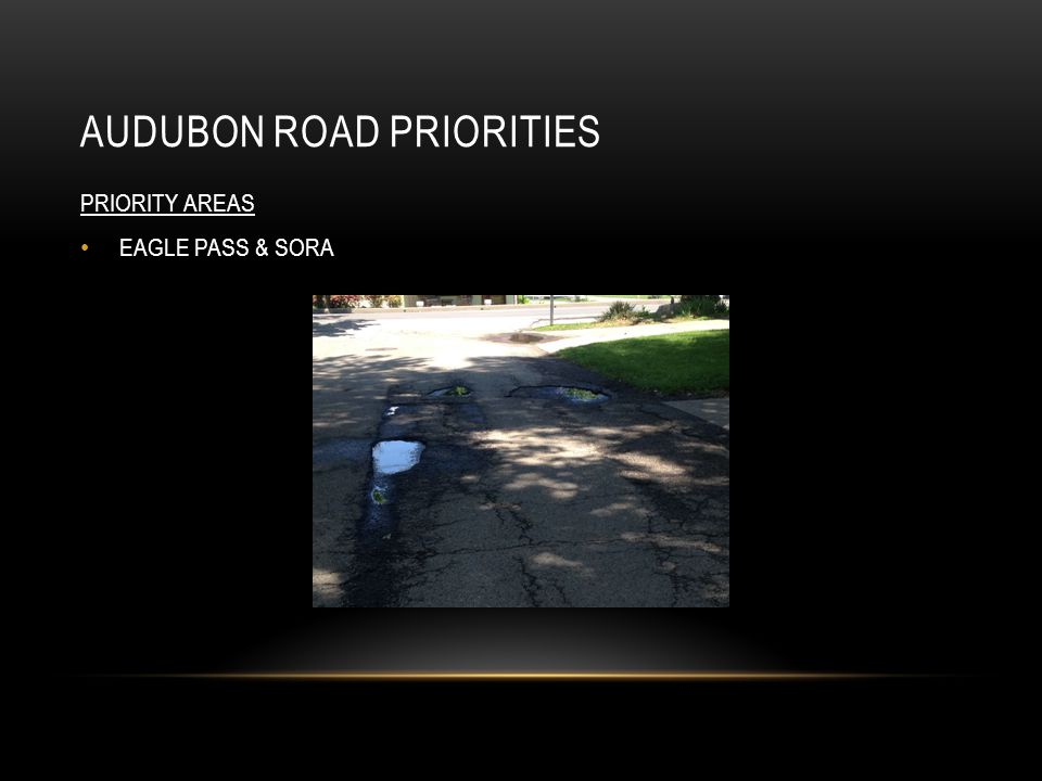 AUDUBON ROAD PRIORITIES PRIORITY AREAS EAGLE PASS & SORA