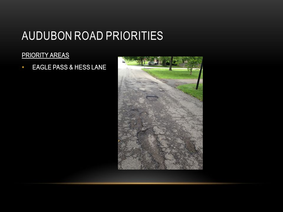 AUDUBON ROAD PRIORITIES PRIORITY AREAS EAGLE PASS & HESS LANE