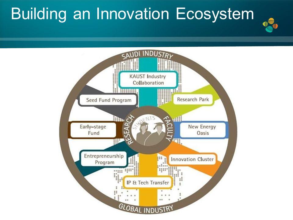 Building an Innovation Ecosystem