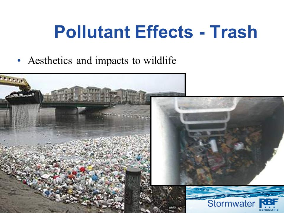 Stormwater Pollutant Effects - Trash Aesthetics and impacts to wildlife 7