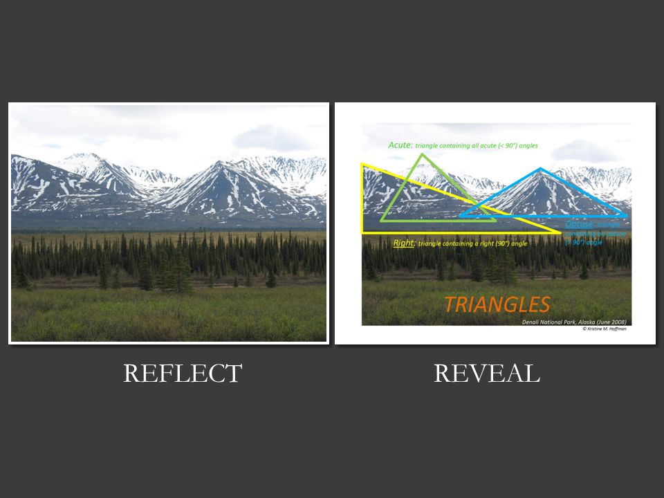 REFLECTREVEAL