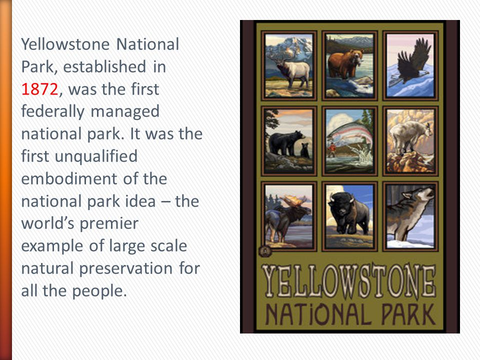 Yellowstone National Park, established in 1872, was the first federally managed national park. It was the first unqualified embodiment of the national