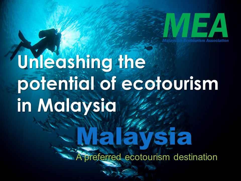Unleashing the potential of ecotourism in Malaysia What is Ecotourism.