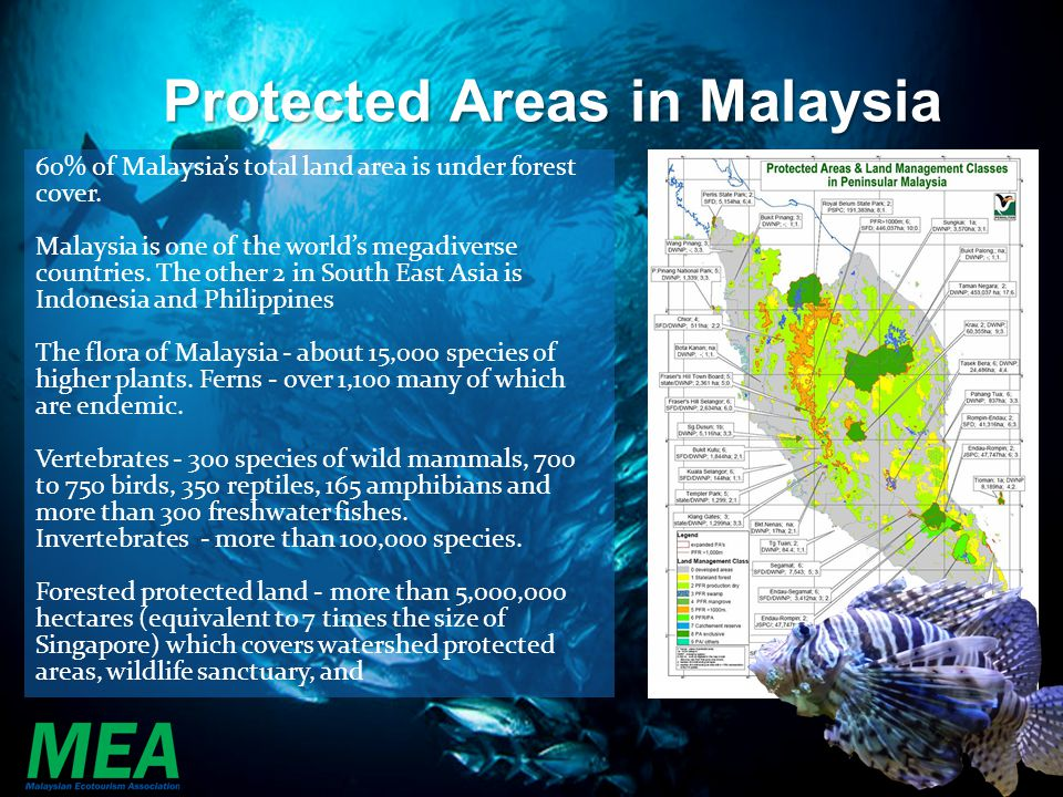 Protected Areas in Malaysia 60% of Malaysias total land area is under forest cover. Malaysia is one of the worlds megadiverse countries. The other 2 i