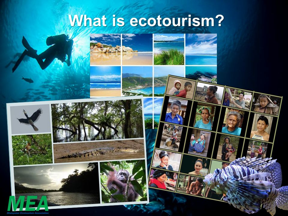 Types of nature based tourism Tourism about the environment, flora & fauna Tourism for the environment, flora, fauna & communities Tourism in the environment Nature Tourism/ Wildlife Tourism Ecotourism Adventure Tourism