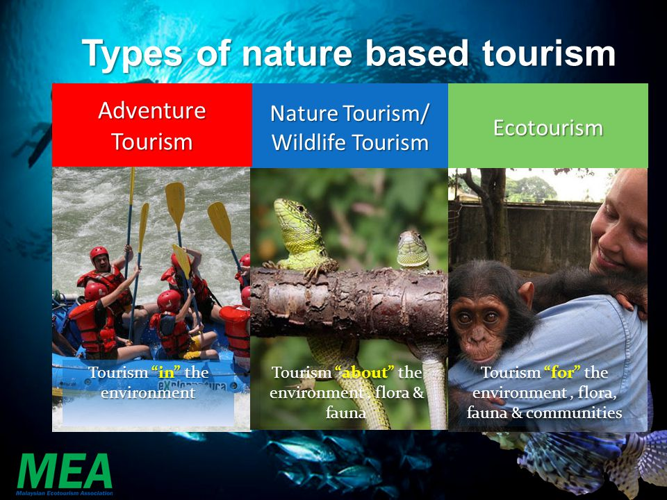 Types of nature based tourism Tourism about the environment, flora & fauna Tourism for the environment, flora, fauna & communities Tourism in the envi