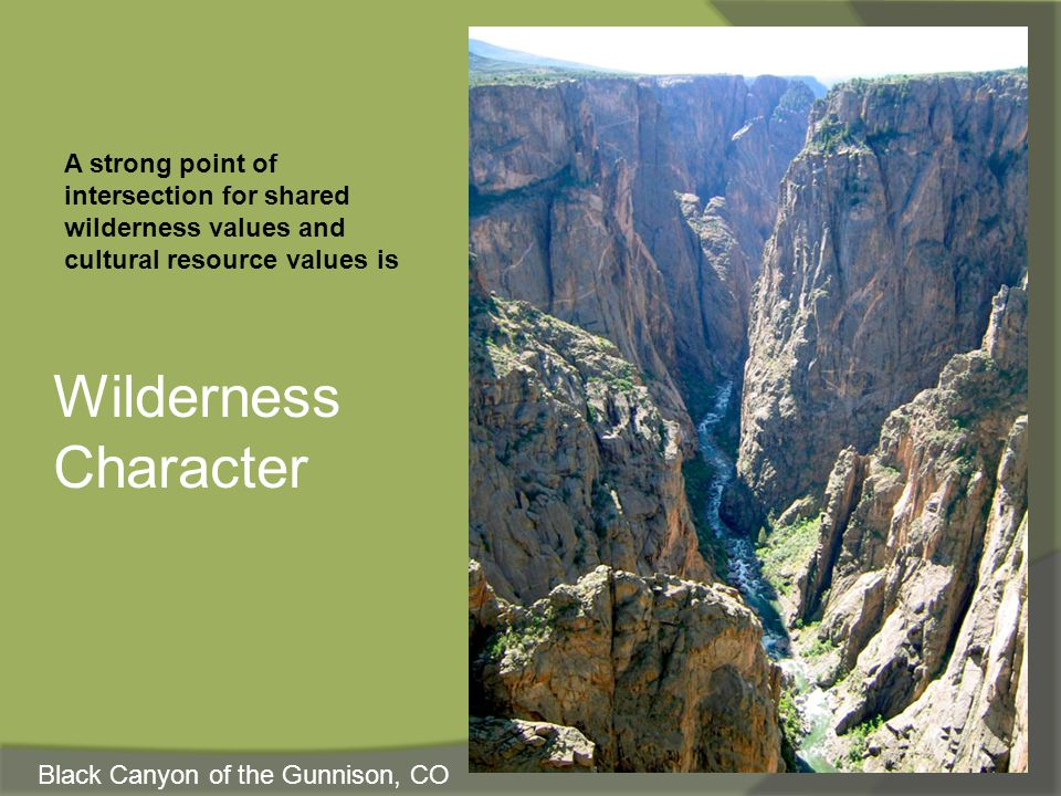 The Qualities of Wilderness Character 1.Untrammeled 2.Undeveloped 3.Natural 4.Outstanding opportunities for solitude or a primitive and unconfined type of recreation (the above contribute to all wilderness) FIFTH QUALITY: Other features, based on the last part of Section 2c, Definition of Wilderness, in the Wilderness Act, that a wilderness may also contain ecological, geological, or other features of scientific, educational, scenic, or historical value.