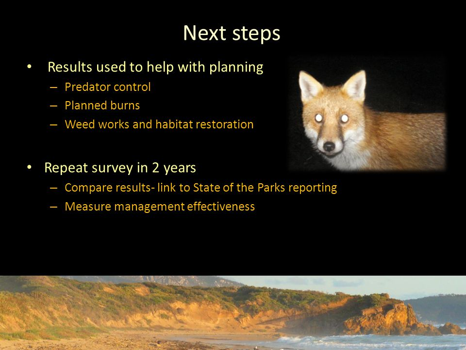Next steps Results used to help with planning – Predator control – Planned burns – Weed works and habitat restoration Repeat survey in 2 years – Compare results- link to State of the Parks reporting – Measure management effectiveness