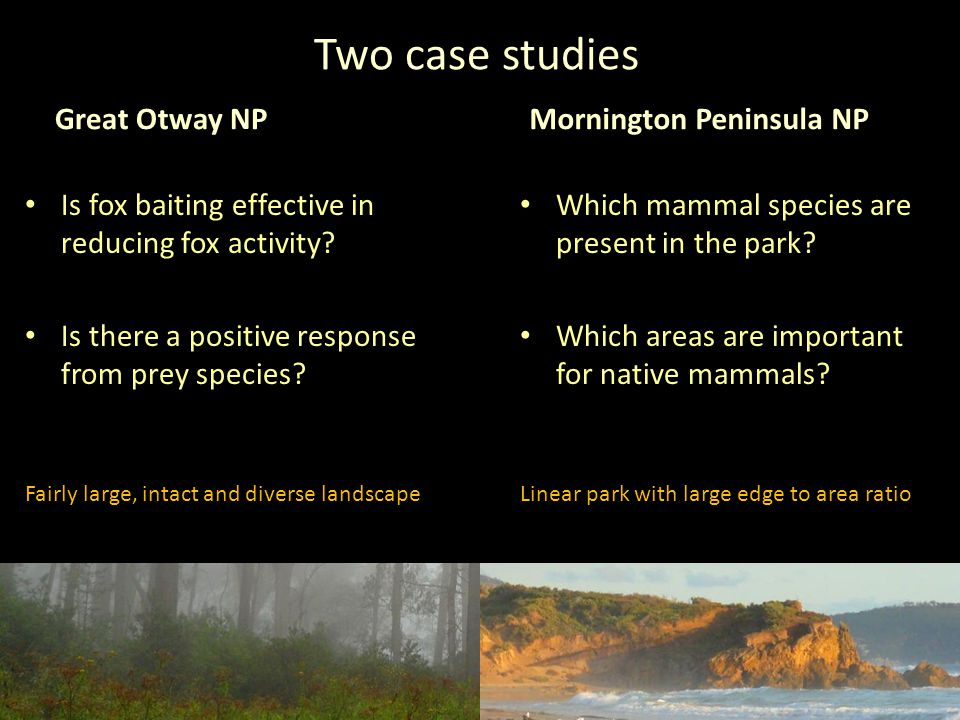 Two case studies Great Otway NP Is fox baiting effective in reducing fox activity.