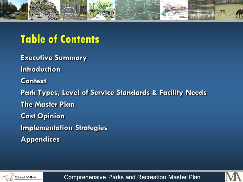Comprehensive Parks and Recreation Master Plan Table of Contents Executive Summary IntroductionContext Park Types, Level of Service Standards & Facility Needs The Master Plan Cost Opinion Implementation Strategies Appendices Executive Summary IntroductionContext Park Types, Level of Service Standards & Facility Needs The Master Plan Cost Opinion Implementation Strategies Appendices