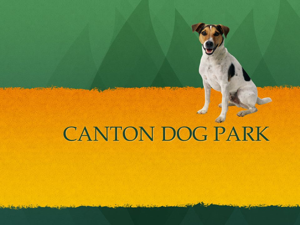 CANTON DOG PARK CANTON DOG PARK
