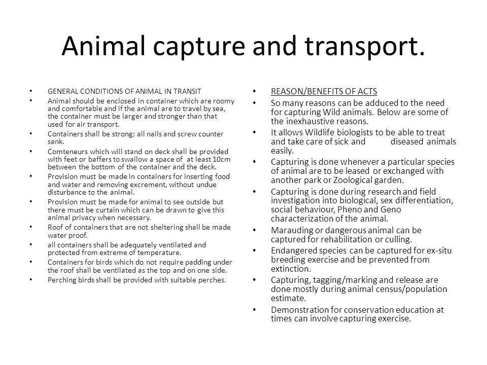 Animal capture and transport.