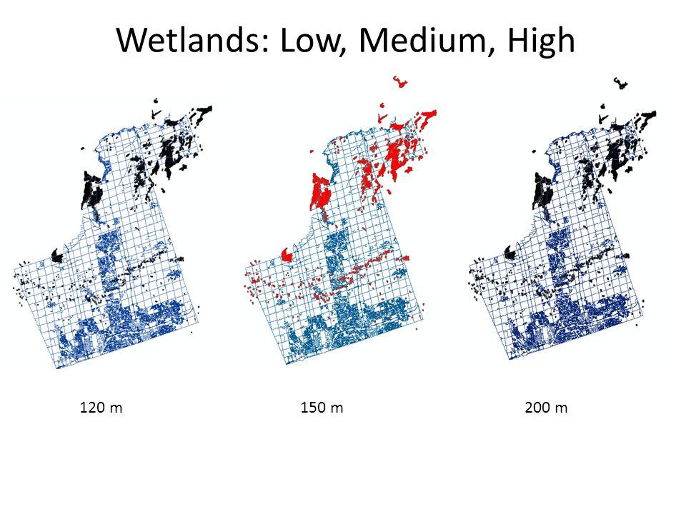 Wetlands: Low, Medium, High 120 m150 m200 m
