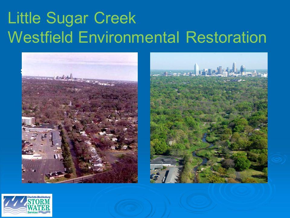 Site photos Little Sugar Creek Westfield Environmental Restoration