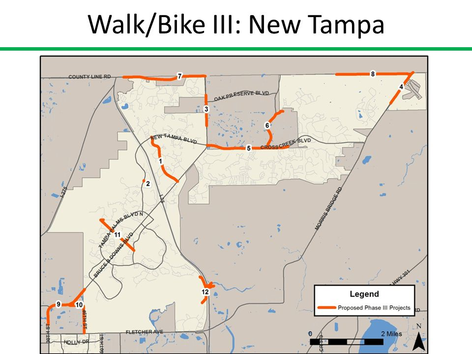 Tampa Walk-Bike Plan Phase III Trail Head at Hillsborough Avenue
