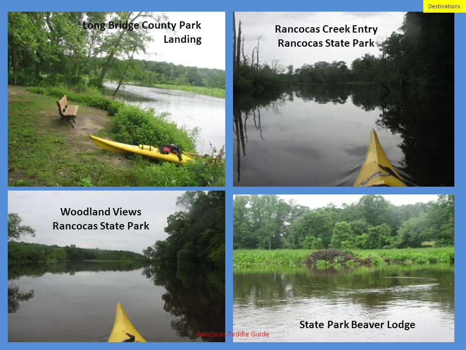 Woodland Views Rancocas State Park Rancocas Creek Entry Rancocas State Park State Park Beaver Lodge Long Bridge County Park Landing Rancocas Paddle Gu