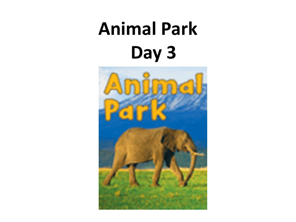 Daily Fix-it 5.Jummp up for a nutt 6.she kut a rug up Unit 1 Animal Park - Day 3
