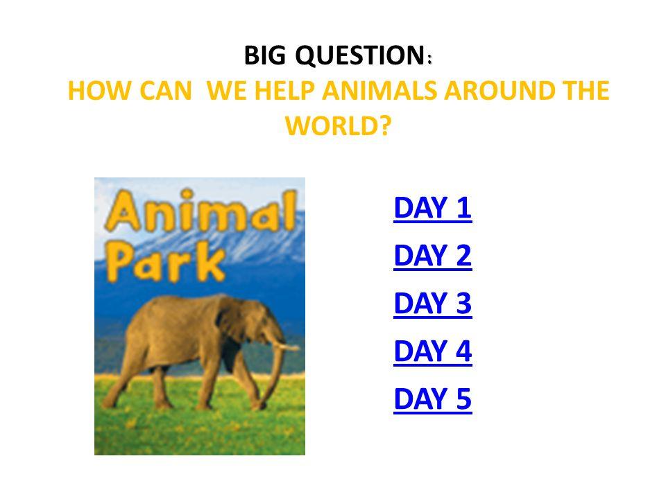 Animal Park Day 1