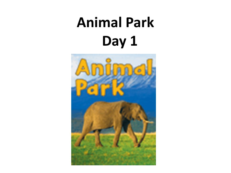 Daily Fix-it 1.junp onto a bus to go home. 2.many of them sit in sunn. Unit 1 Animal Park - Day 1