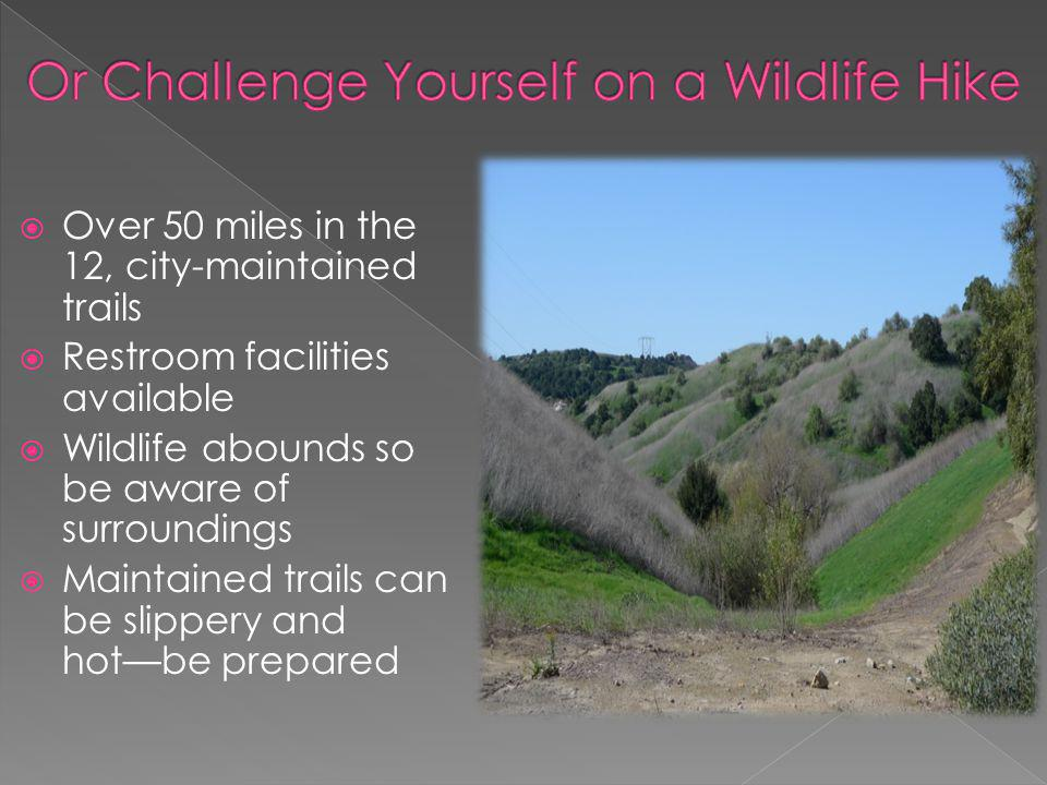 Over 50 miles in the 12, city-maintained trails Restroom facilities available Wildlife abounds so be aware of surroundings Maintained trails can be slippery and hotbe prepared