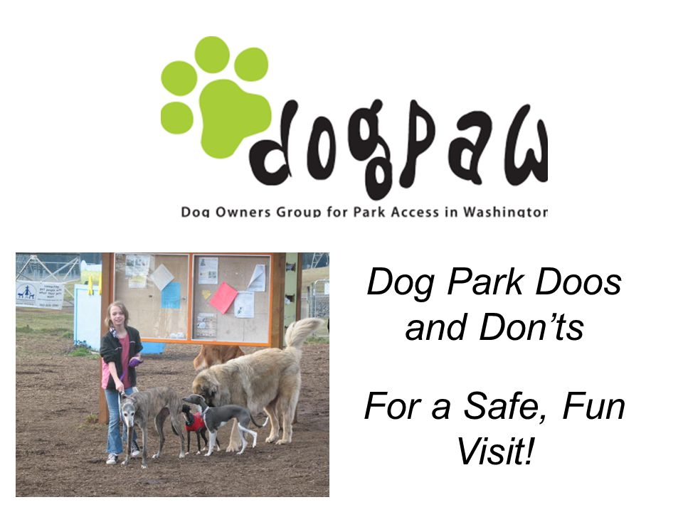 Dog Park Doos and Donts For a Safe, Fun Visit!