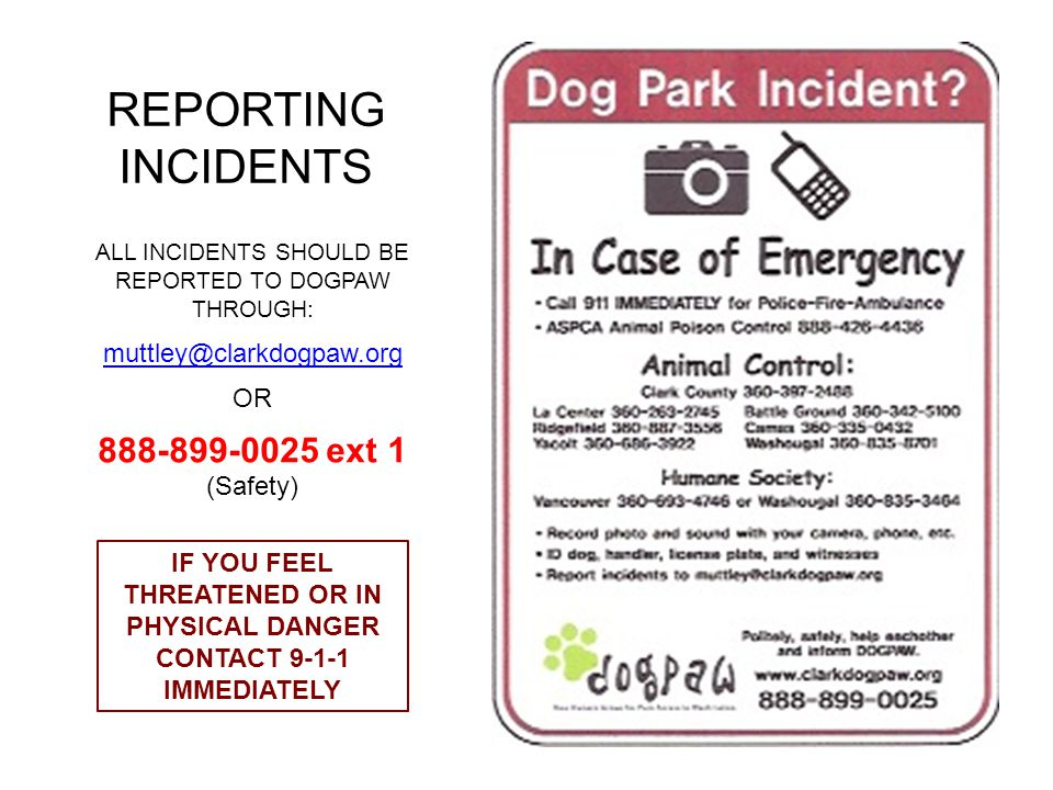 REPORTING INCIDENTS ALL INCIDENTS SHOULD BE REPORTED TO DOGPAW THROUGH: muttley@clarkdogpaw.org OR 888-899-0025 ext 1 (Safety) IF YOU FEEL THREATENED OR IN PHYSICAL DANGER CONTACT 9-1-1 IMMEDIATELY