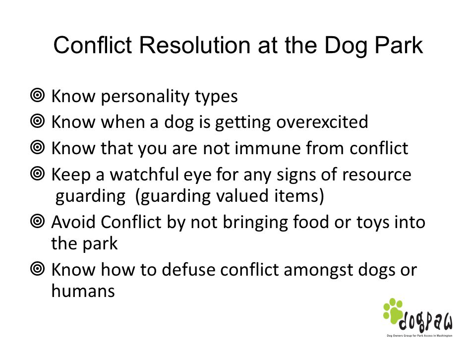 Conflict Resolution at the Dog Park Know personality types Know when a dog is getting overexcited Know that you are not immune from conflict Keep a wa
