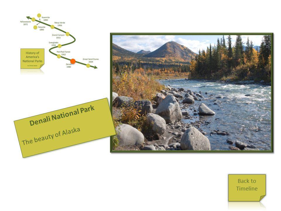 Denali Denali National Park The beauty of Alaska Denali National Park The beauty of Alaska