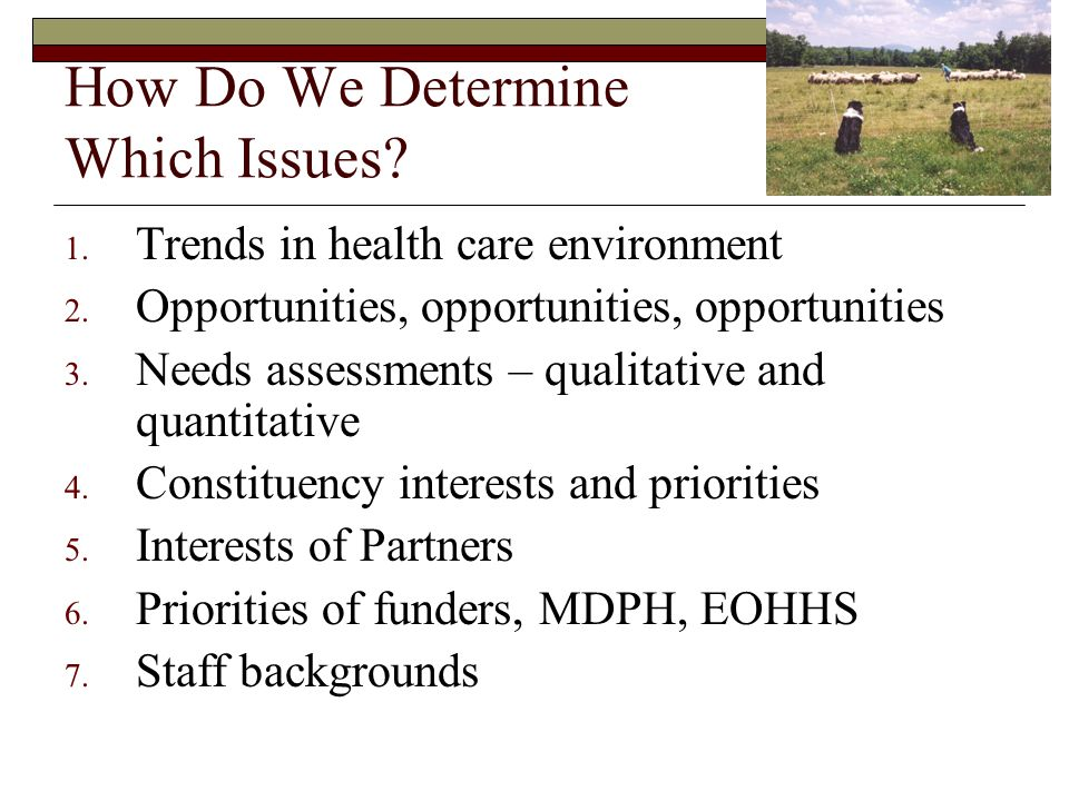 How Do We Determine Which Issues? 1. Trends in health care environment 2. Opportunities, opportunities, opportunities 3. Needs assessments – qualitati
