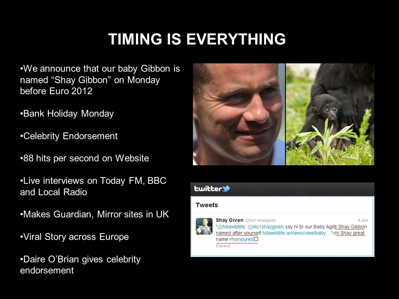 TIMING IS EVERYTHING We announce that our baby Gibbon is named Shay Gibbon on Monday before Euro 2012 Bank Holiday Monday Celebrity Endorsement 88 hits per second on Website Live interviews on Today FM, BBC and Local Radio Makes Guardian, Mirror sites in UK Viral Story across Europe Daire OBrian gives celebrity endorsement