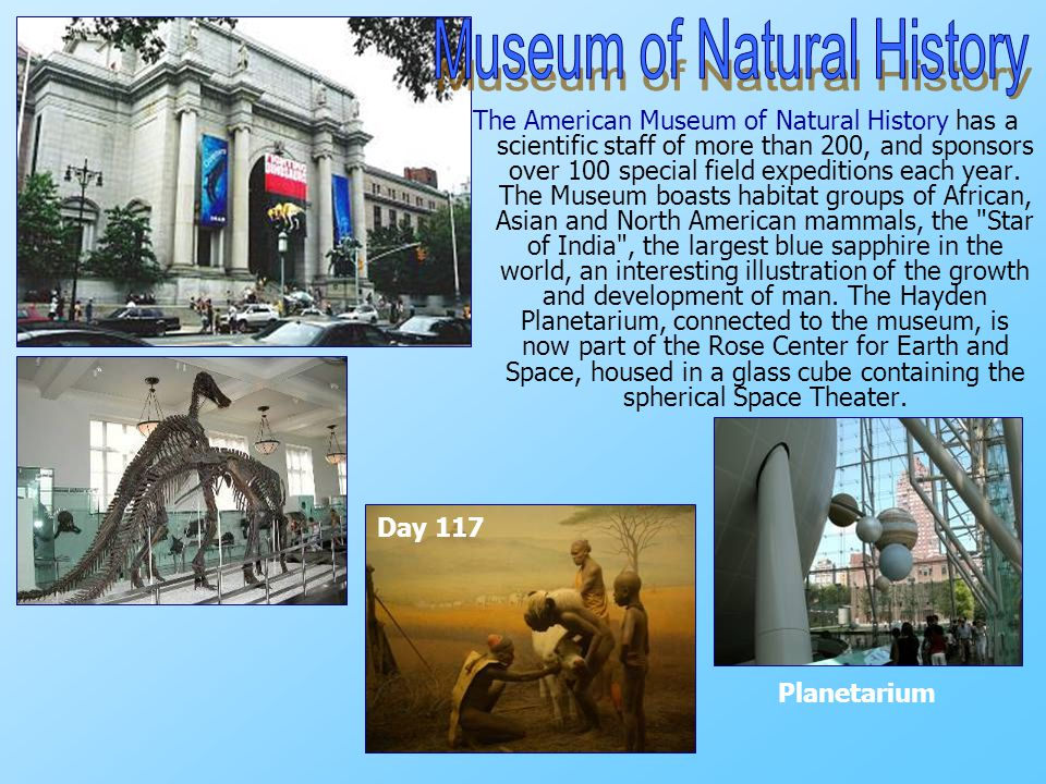 The American Museum of Natural History has a scientific staff of more than 200, and sponsors over 100 special field expeditions each year.