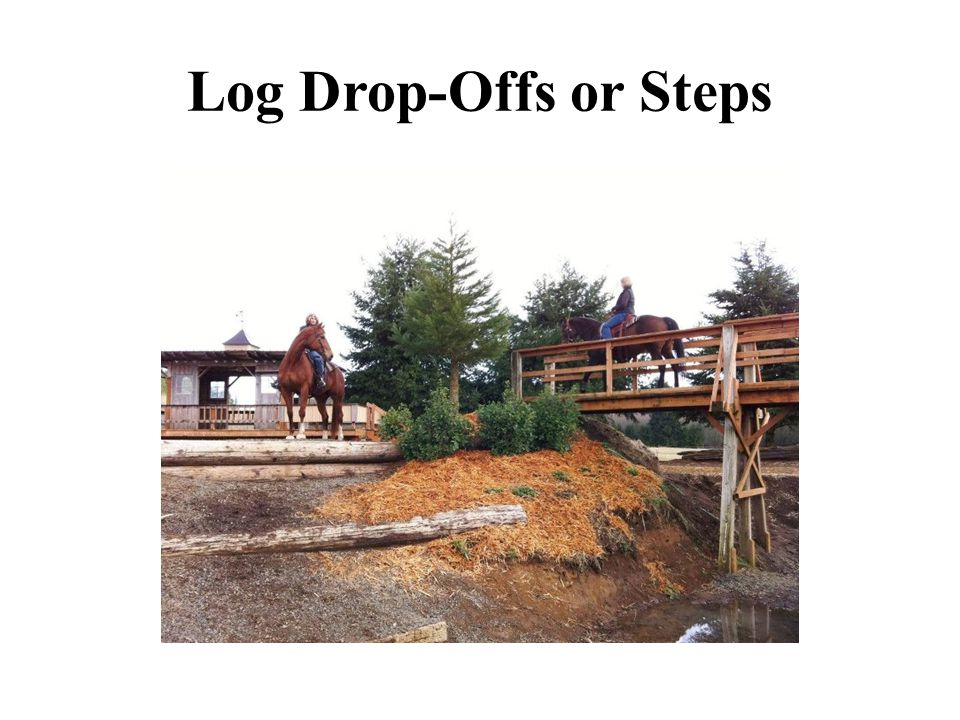 Log Drop-Offs or Steps