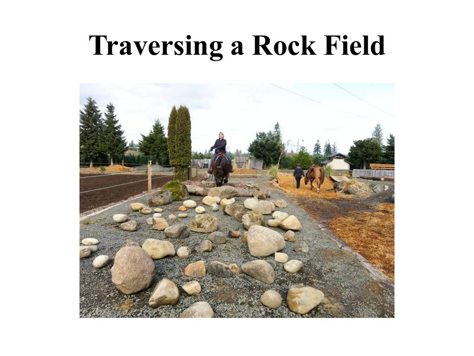 Traversing a Rock Field