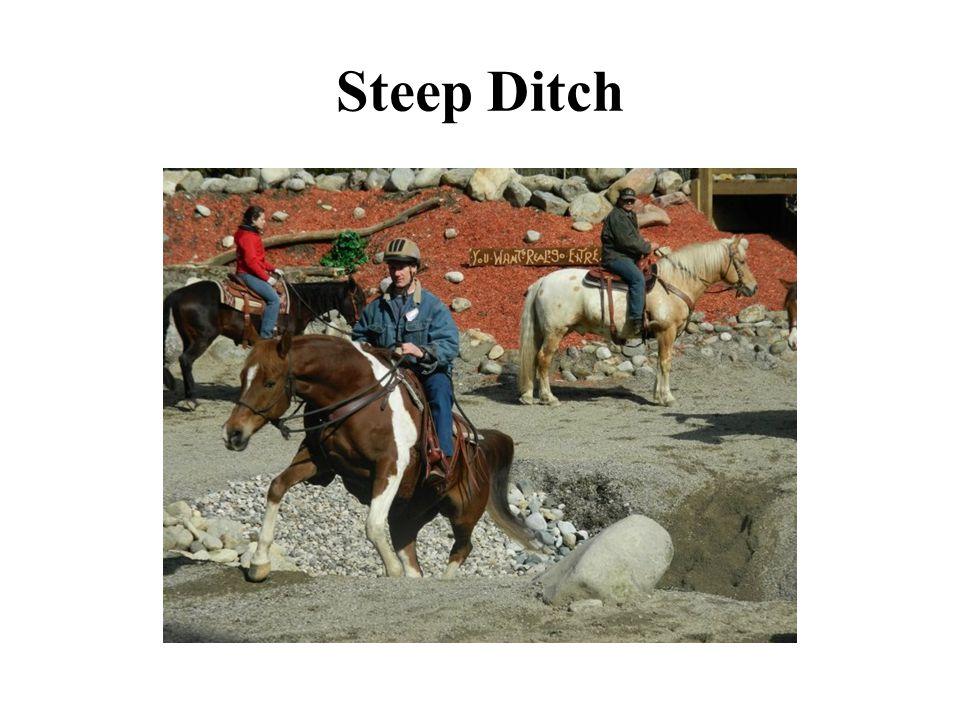 Steep Ditch
